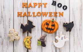 Обои праздник, надпись, паук, печенье, тыква, хэллоуин