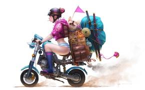 Обои гольфы, акита-ину, портфель, оружие, флажок, очки, катана, девушка, вещи, чемодан, аниме, мотоцикл, шлем, арт, wen ...