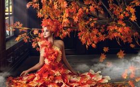 Картинка осень, листья, девушка, стиль, дерево