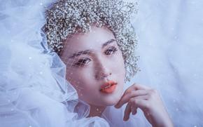 Картинка взгляд, девушка, цветы, лицо, стиль, настроение, рука, макияж, азиатка, невеста, фата, вуаль, гипсофила