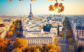 Картинка осень, небо, листья, солнце, деревья, ветки, Франция, Париж, дома, желтые, Эйфелева башня, вид сверху, улицы