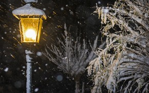 Картинка снег, ветки, фонарь