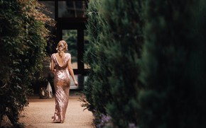 Картинка девушка, деревья, платье