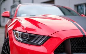 Картинка car, авто, lights, фары, Mustang, Ford, мустанг, тачка, Форд, GTR, автомобиль, auto, ГТР, wheelbarrow