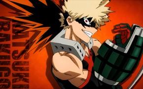 Картинка anime, hero, manga, japanese, 003, by sanoboss, Boku no Hero Academia, My Hero Academia
