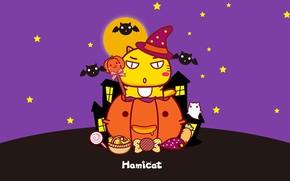 Картинка кот, праздник, Хеллоуин