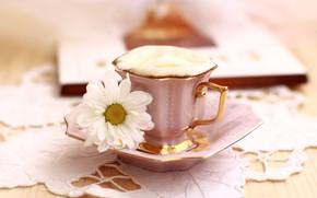 Картинка цветок, кофе, чашка, пенка