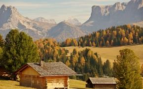 Обои лес, долина, скалы, солнце, Bolzano, осень, деревья, горы, Италия, домики