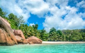Картинка песок, море, пляж, лето, тропики, камни