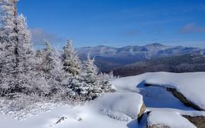 Картинка зима, лес, снег, пейзаж, горы, панорама