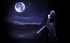 Картинка лес, небо, звезды, ночь, мост, луна, Девушка, водоем