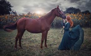 Картинка поле, девушка, настроение, лошадь, платье
