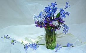Картинка цветы, красота, весна, подснежники, май, первоцветы, букетик, пролески, композиция, букеты, медуница, пушкинария