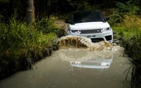 Картинка дорога, лес, вода, волна, лужа, внедорожник, Land Rover, чёрно-белый, Range Rover Sport P400e Plug-in Hybrid