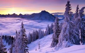 Картинка зима, небо, облака, снег, деревья, горы, рассвет, склон