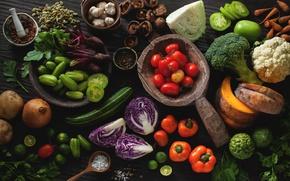 Картинка грибы, лук, тыква, перец, овощи, помидоры, капуста, петрушка, огурцы, чеснок, брокколи, соль, свекла