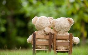 Картинка любовь, игрушка, медведь, пара, love, двое, bear, park, teddy