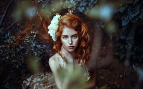 Картинка лес, цветок, взгляд, веснушки, рыжая, причёска, рыжеволосая, локоны, конопатая, Camila Espinoza