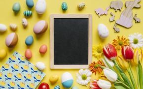 Картинка цветы, ромашки, весна, colorful, Пасха, тюльпаны, хризантемы, flowers, tulips, spring, Easter, eggs, decoration, Happy, яйца …