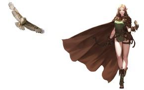 Картинка птица, арт, эльфийка, плащ, сокол, Elf, Daeho Cha