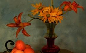 Картинка букет, лепестки, ваза, натюрморт, абрикосы