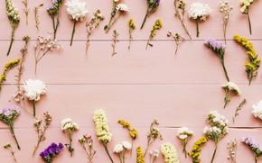 Картинка цветы, фон, весна, pink, flowers, background, spring