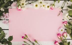 Картинка цветы, бумага, Розы, хризантемы