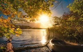 Обои осень, свет, лодка, озеро, утро