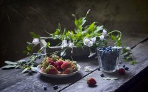 Картинка цветы, ягоды, коробка, черника, клубника, натюрморт, wood