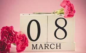 Обои гвоздики, 8 марта, женский день, красные, дата, цветы
