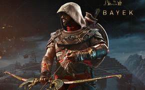 Обои Bayek, луг, ассасин, Assassin's Creed: Origins, Истоки, Байек, оружие, Assassin's Creed, меджай