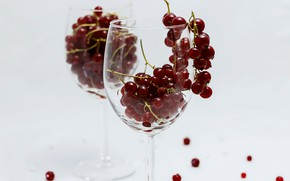 Картинка стекло, ягоды, бокал, посуда, натюрморт, смородина, фужер