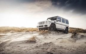Картинка Mercedes, Sky, Coast, White, Sand, W463, G-class