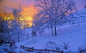 Картинка зима, снег, деревья, закат, сказка, вечер, Pascal Laurent