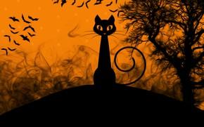 Картинка кошка, хэллоуин, картинка