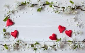Обои цветы, сердечки, день святого Валентина, праздник