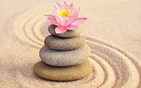 Картинка песок, цветок, камни, лотос, flower, pink, sand, спа, stones, spa, zen