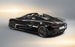 Обои McLaren, вид сзади, 2018, Spider, Design Edition, 570S