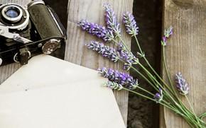 Картинка цветы, фотоаппарат, лаванда, конверт