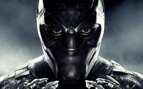 Картинка фантастика, маска, костюм, постер, комикс, MARVEL, Black Panther, Чёрная Пантера