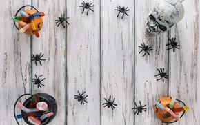 Картинка праздник, череп, паук, хэллоуин, мармелад