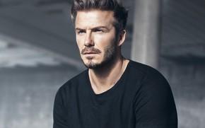 Картинка взгляд, фото, мужчина, David Beckham, David Beckham (2018)
