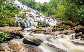 Картинка лес, река, водопад, forest, river, landscape, jungle, waterfall, tropical
