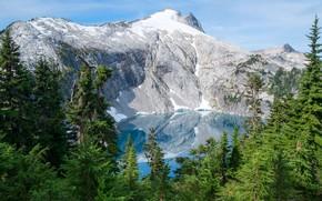Картинка зелень, лес, небо, солнце, снег, деревья, горы, озеро, скалы, США, Mount Rainier National Park, Cyclone ...