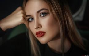 Картинка взгляд, лицо, поза, модель, портрет, макияж, прическа, шатенка, красотка, боке, Дарья, Alexander Drobkov-Light