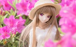 Картинка цветы, кукла, шляпка
