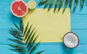 Картинка фон, кокос, листья пальмы, грейфрукт