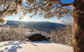 Картинка зима, снег, деревья, горы, вид, панорама