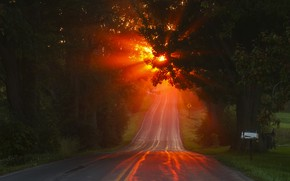 Картинка дорога, осень, свет, утро