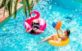Картинка вода, девушки, отдых, бассейн, фламинго